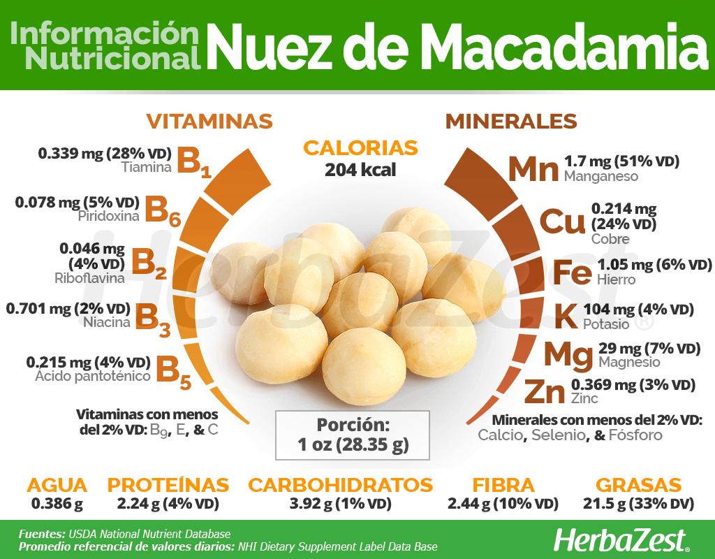 Información Nutricional De La Nuez De Macadamia Frutas Y Verduras Beneficios Dietetica Y Nutricion Beneficios De Alimentos