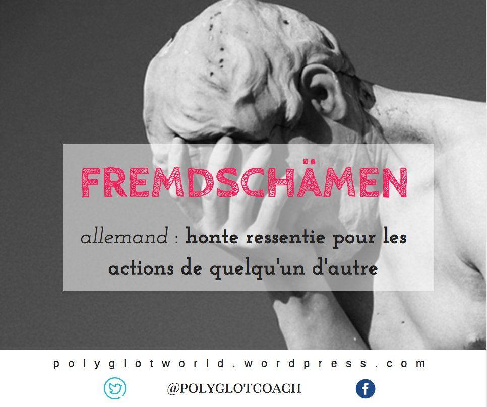 Fremdschamen Mot Allemand Qui N Existe Pas En Francais Polyglotcoach Polyglotcoach Twitter Historical Figures Historical