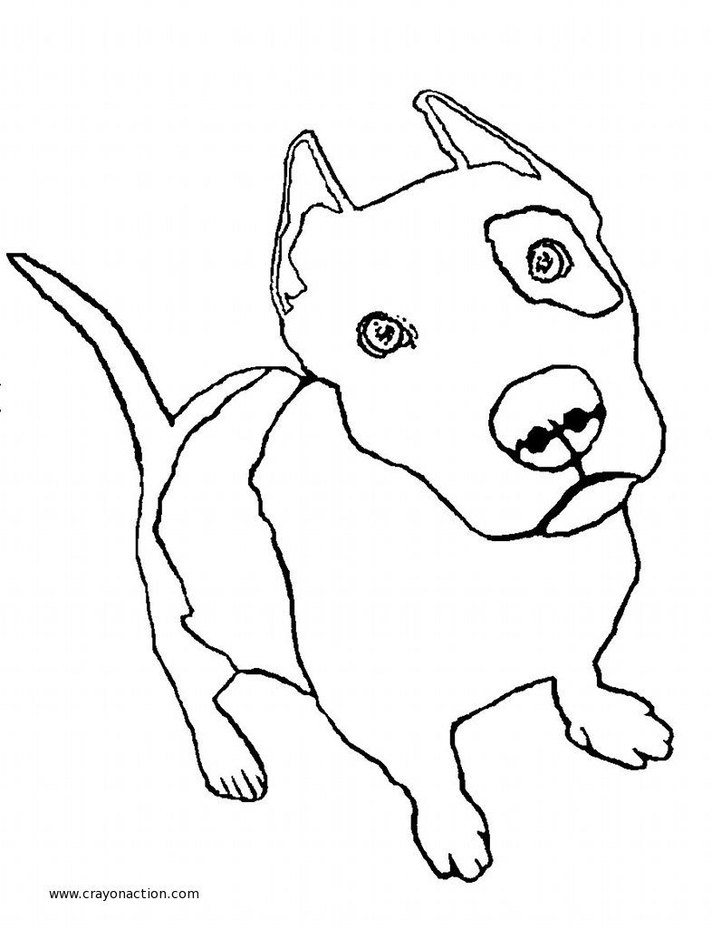 Pit Bull Puppy Coloring Page | Crayon Action Coloring Pages Find ...