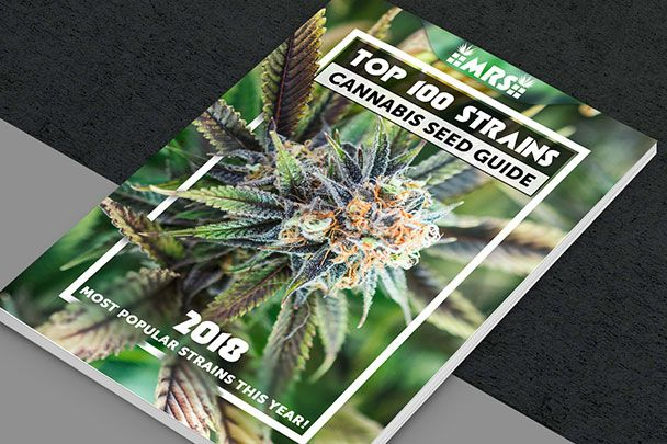 Top 100 Strains 2018 Cannabis Seed Guide FREE EBOOK Cannabis and