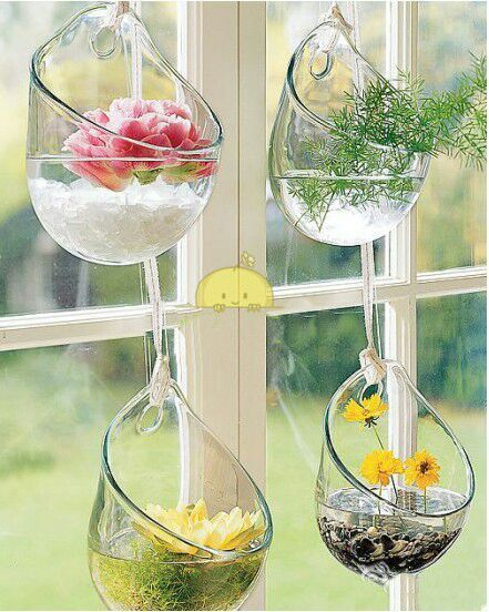 wall style hanging vase Succulents plant