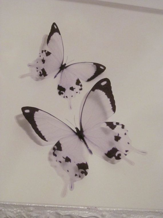4 Luxury Amazing In Flight Cow Print Butterflies 3D Butterfly Wall Art