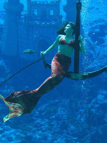 Mermaid on Anchor Weeki Wachee Spring, Florida I wanna go here next year when we go to Florida!
