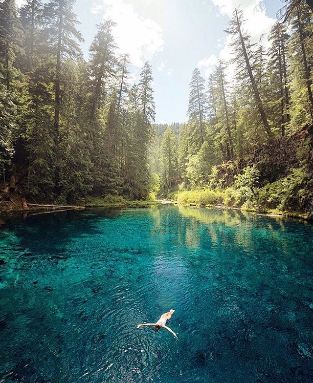 Tamolitch (Blue) Pool in Central Oregon Photo