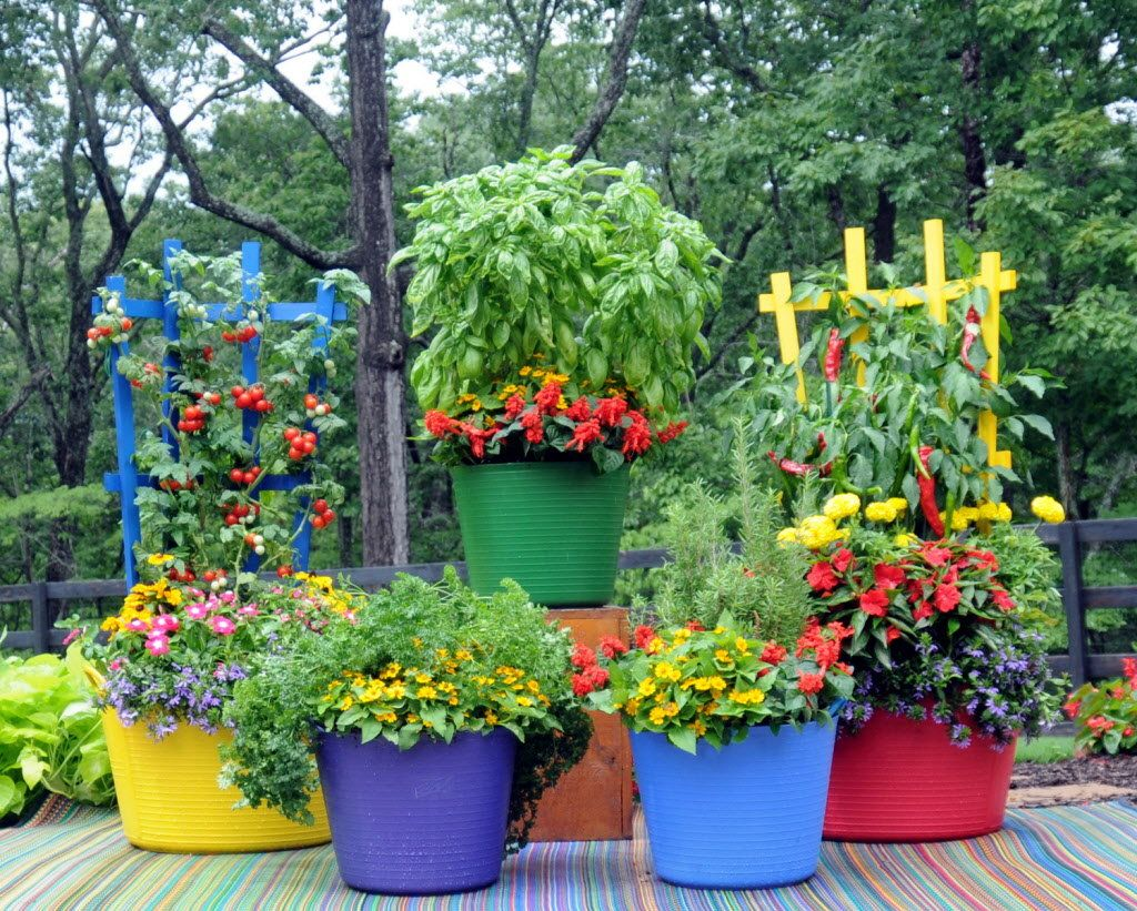 Pretty Kitty Teacup, colorful tubs and trellises, and more: In and Out | Container  gardening, Planter trellis, Garden containers