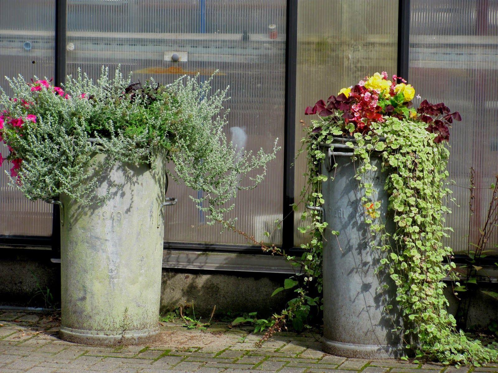 Alte milchkannen bepflanzen garten anders ungew hnlich for Blumentopf dekorieren anleitung