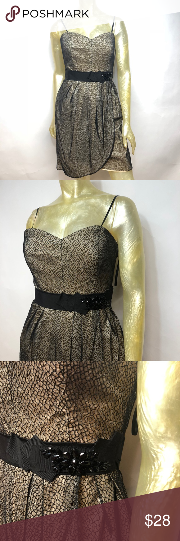 Max And Cleo Black Tan Cocktail Dress Max And Cleo Spaghetti Strap Lace Lined Cocktail Dress Women S Size 8 In Womens Cocktail Dresses Clothes Design Dresses [ 1740 x 580 Pixel ]