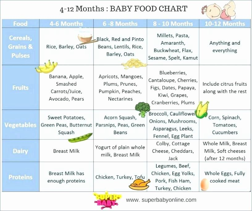 Baby Daily Schedule Template Inspirational Printable Baby Feeding Chart Suitable Schedule Allowed See In 2020 Baby Food Chart Baby Food Recipes Food Charts