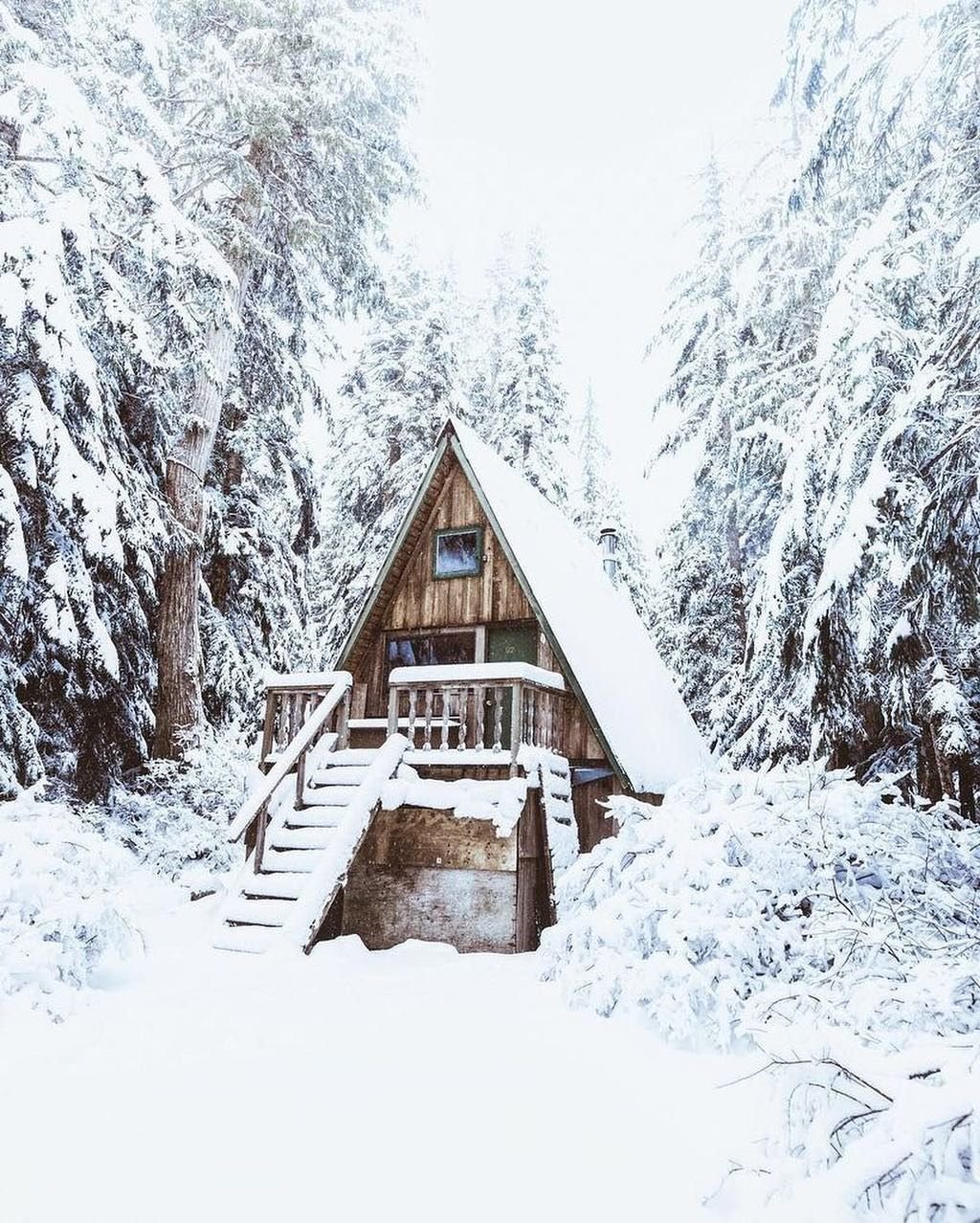 A log cabin symbolizes the embrace between civilization and nature ...