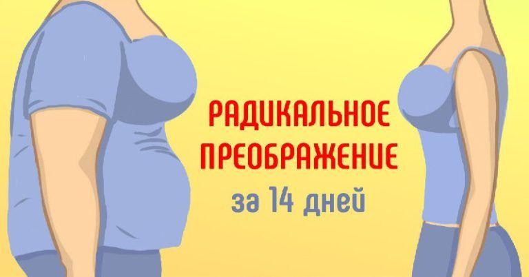 Жидкая диета: похудеть на 10 – 15 кг за две недели.