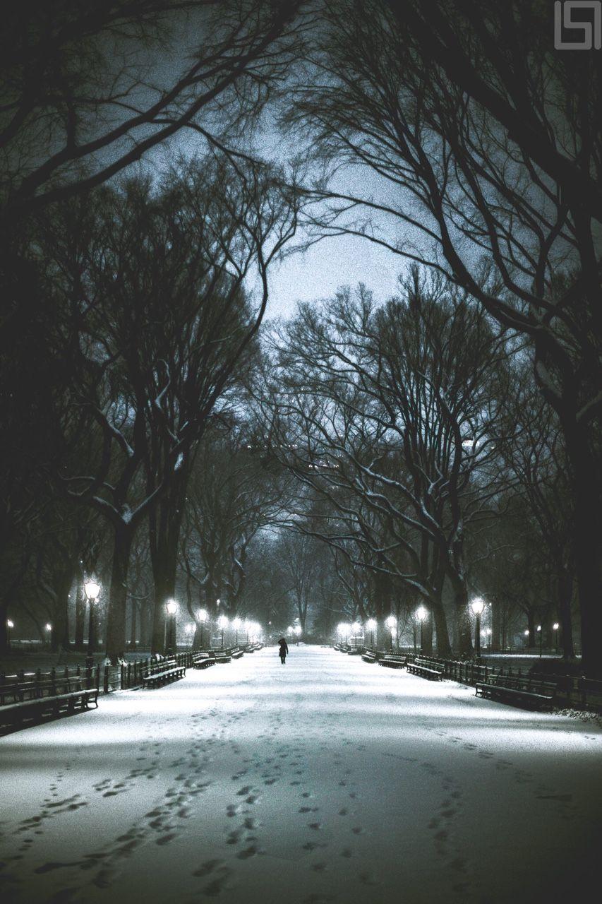 The Mall at Central Park by Paul Seibert @pseibertphoto | newyork newyorkcity newyorkcityfeelings nyc brooklyn queens the bronx staten island manhattan