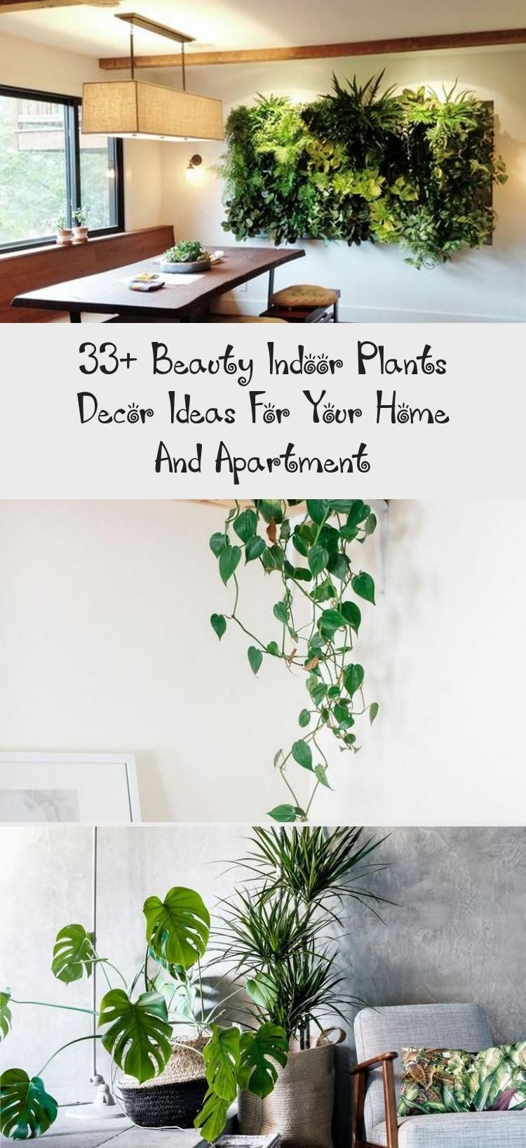 33+ Beauty Indoor Plants Decor Ideas For Your Home And Apartment - GARDEN  33+ Beauty Indoor Plants Decor Ideas For Your Home And Apartment #apartmenttherapy #apartmentliving #Apartment #Beauty #decor #Garden #Home #Ideas #Indoor #Plants