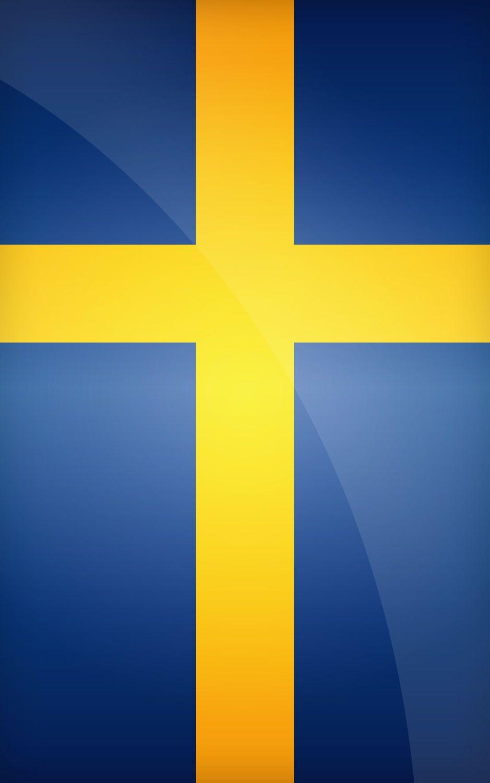 Massive 30 Metres Sweden Swedish Sverige Flag Bunting