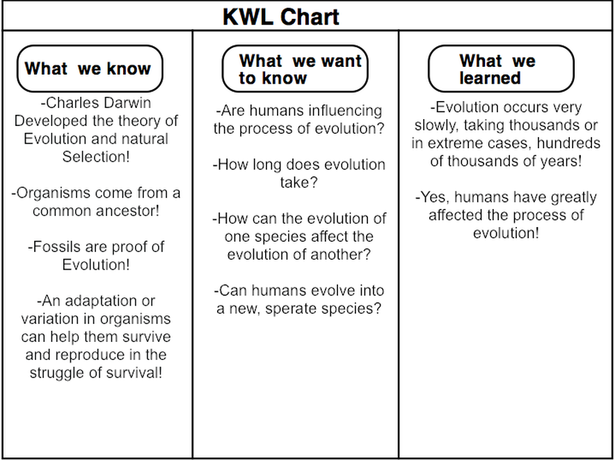 Image Result For Kwl Chart  Writing