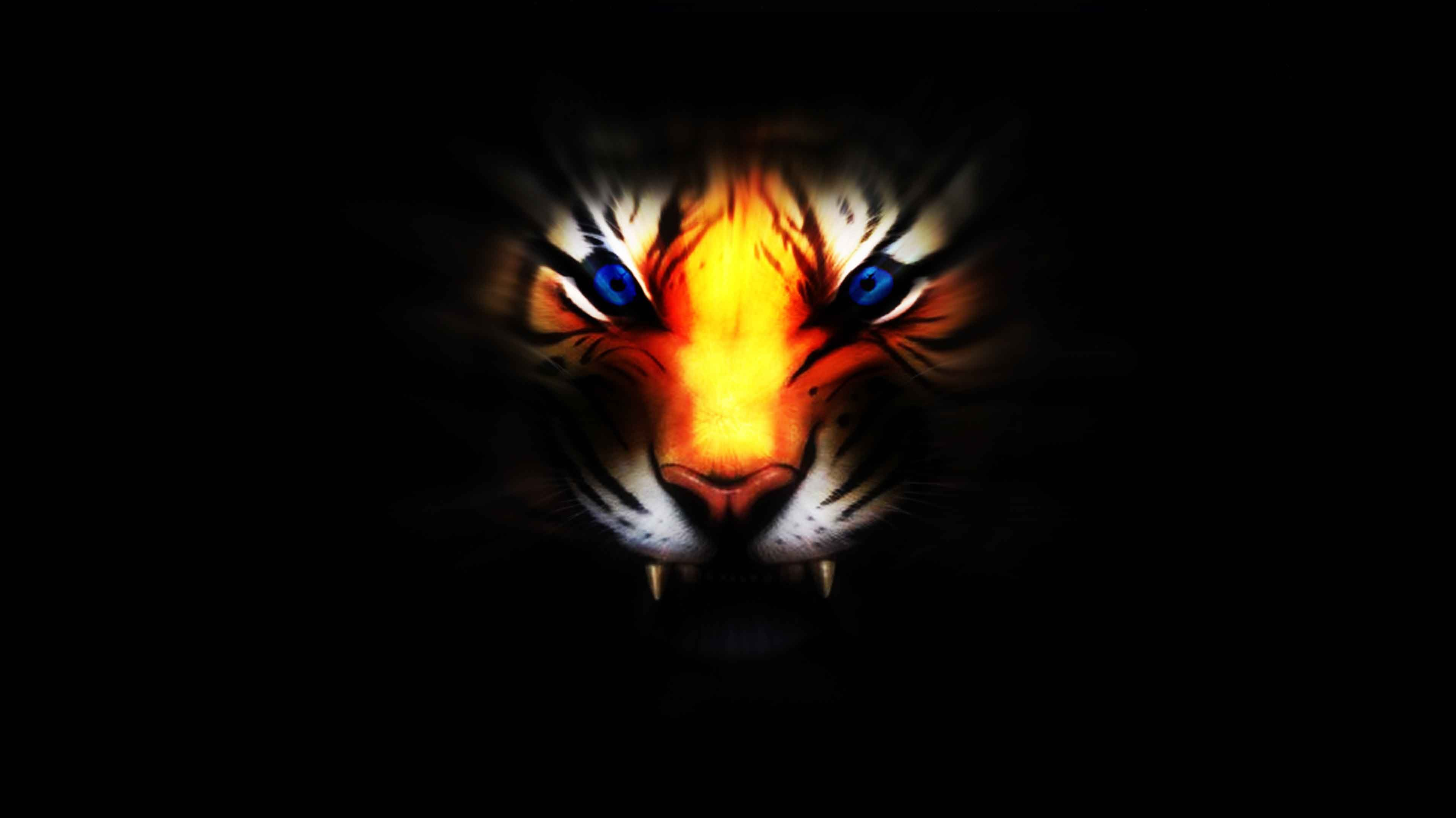 Tiger Wallpapers 3d Photo Animals Wallpapers Pinterest