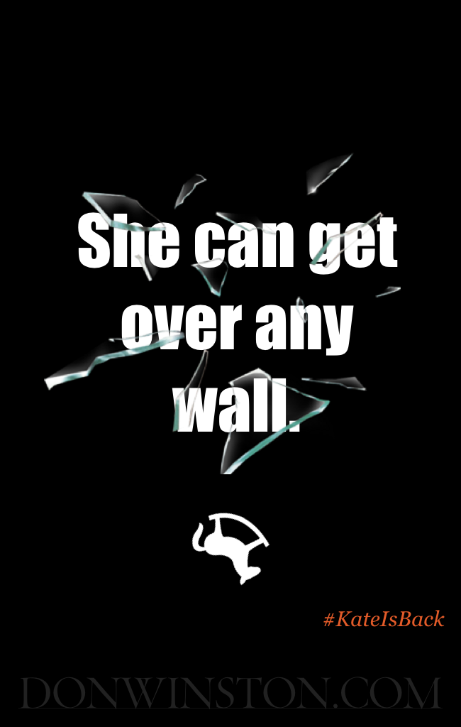 She can get over any wall. https://www.amazon.com/dp/B01LZT1KY5 http://www.donwinston.com
