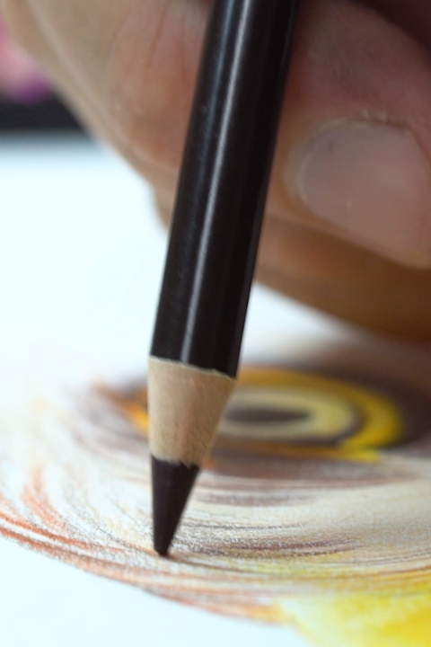 Hot Get These Amazing Professional Colored Pencils By