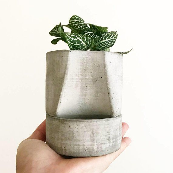 Items similar to PLANTA Handmade Self-Watering Planter, Concrete Planter, Self-Watering Pot, Plant Pot, Self Watering Pots, Plan Decor, Plant Pots on Etsy #selfwatering