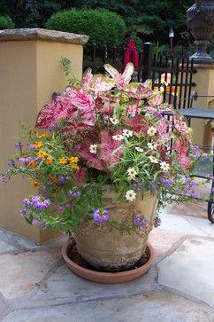 Container garden ideas on pinterest 407 pins for Partial shade garden designs