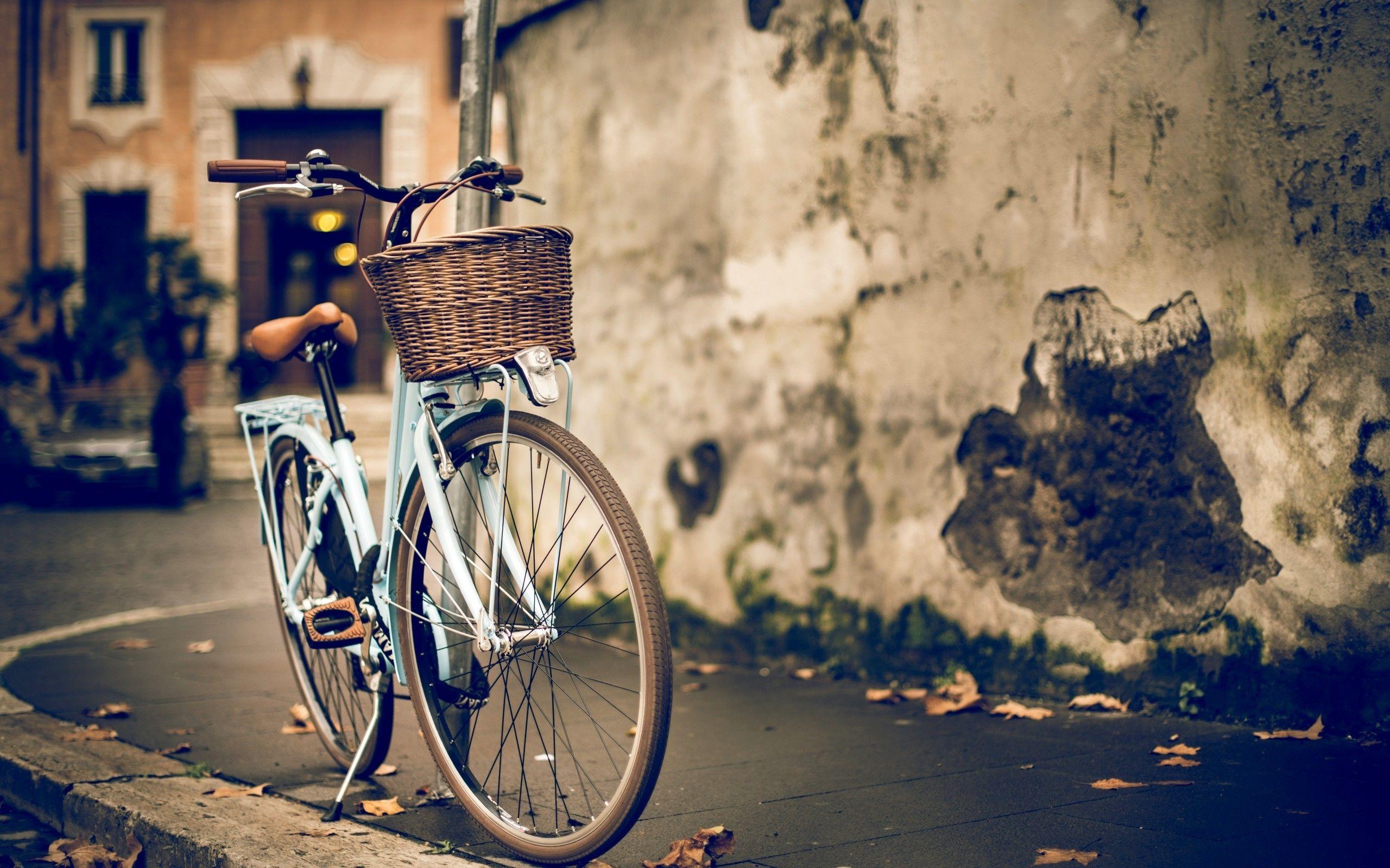 Vintage Girl Bicycle Background Hd