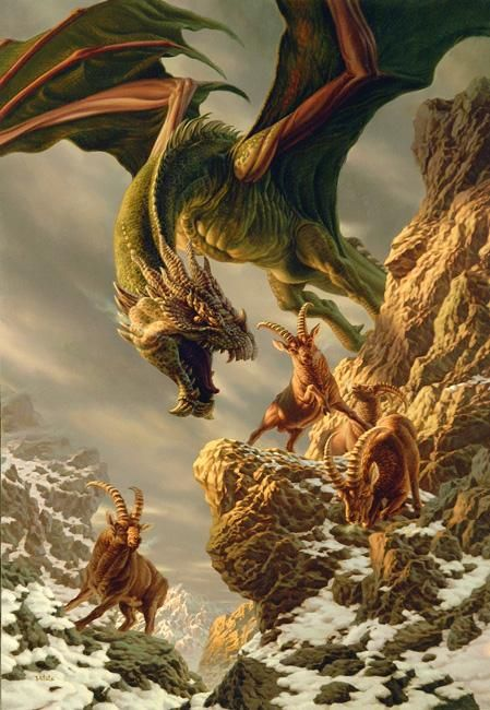 Dragons:  Time for lunch....