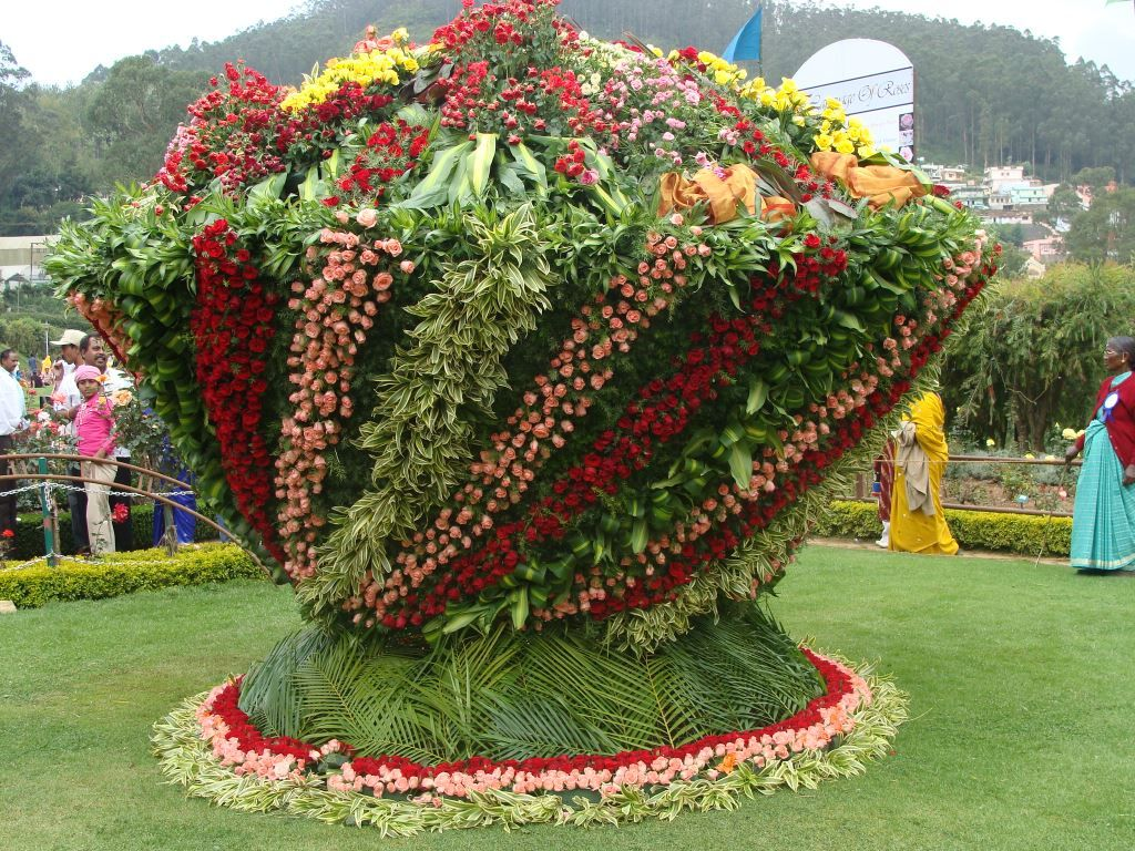 Ooty botanical gardens ooty india gardens for Amazing flower gardens