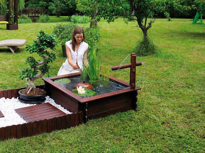 Pour agrémenter le jardin, on installe un bassin avec des poissons ...