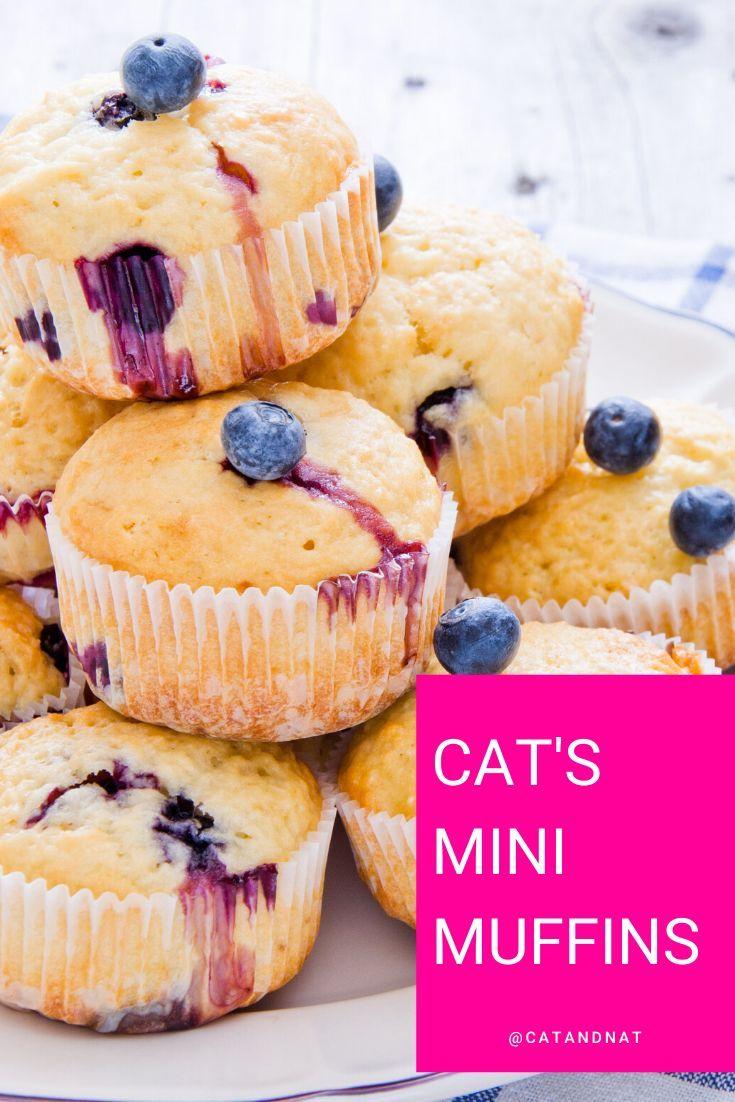 RECIPE Cat's Mini Muffins (made with applesauce 🍎) Mini