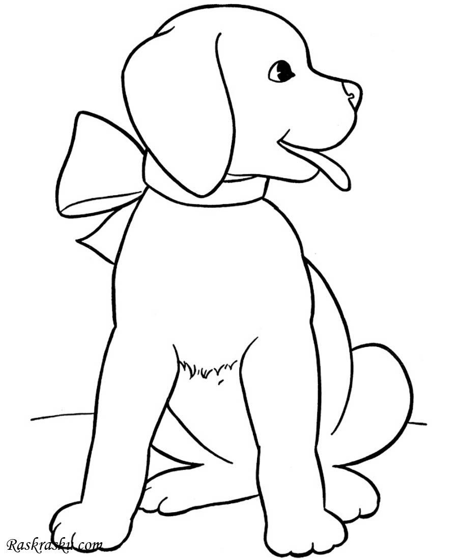 печатать картинки собак печать