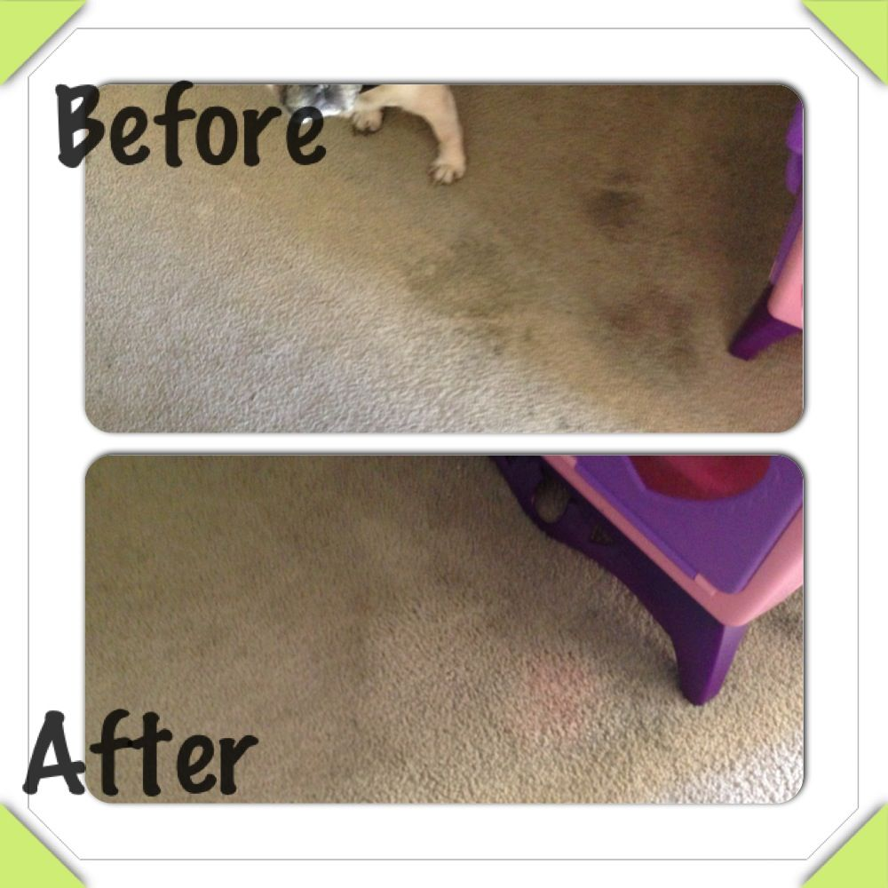 Amazing Use A Magic Eraser To Clean Very Old Carpet Stains Only Down Fall Is That It Doesn T Seem To How To Clean Carpet Magic Eraser Cleaning Carpet Stains