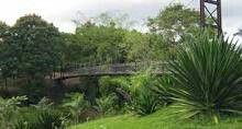 Jardin botanico♥