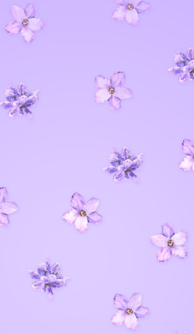 Pin By Steph Wright On Iphone Wallpaper Purple Wallpaper Iphone Light Purple Wallpaper Purple Wallpaper