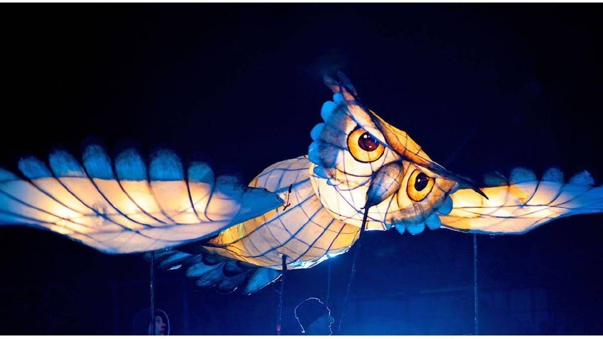 moruya riverlights - Google Search