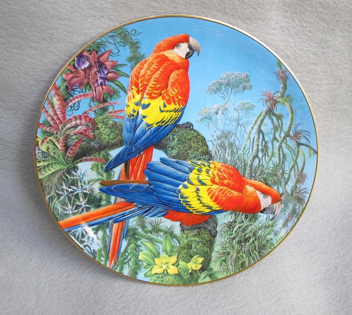 Wedgwood Scarlet Macaws Plate from England