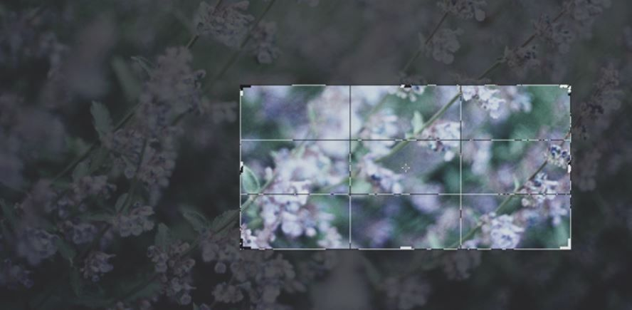 3 طرق لقص الصور فى ويندوز 10 بدون استعمال اي برامج Crop Image Photo Image Photo