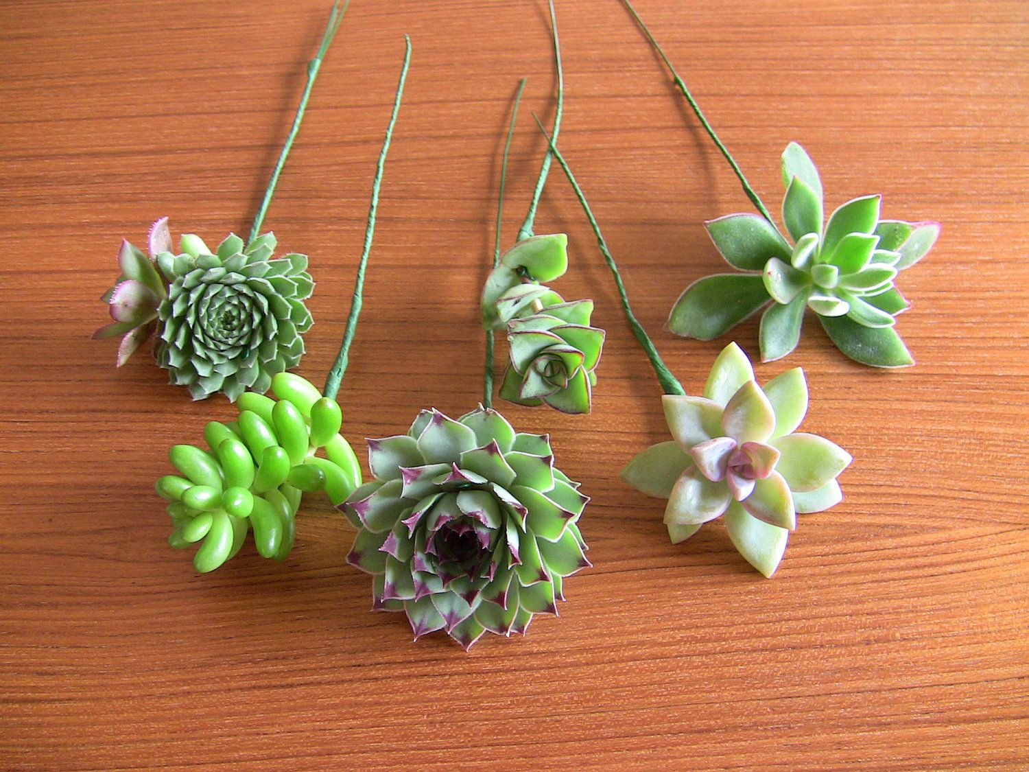 Diy Wedding Bouquet Diy Succulent Bouquet Wedding Secret Stuff
