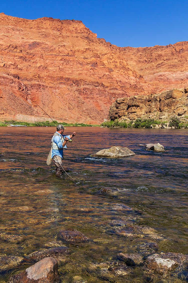 Fly Fisherman Practicing Social Distancing On Colorado River In 2020 Fly Fishing Colorado River Southwest Usa