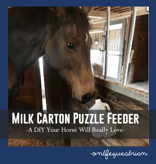 Make Your Own Puzzle Feeder Toys For Horses Horse Food Horses