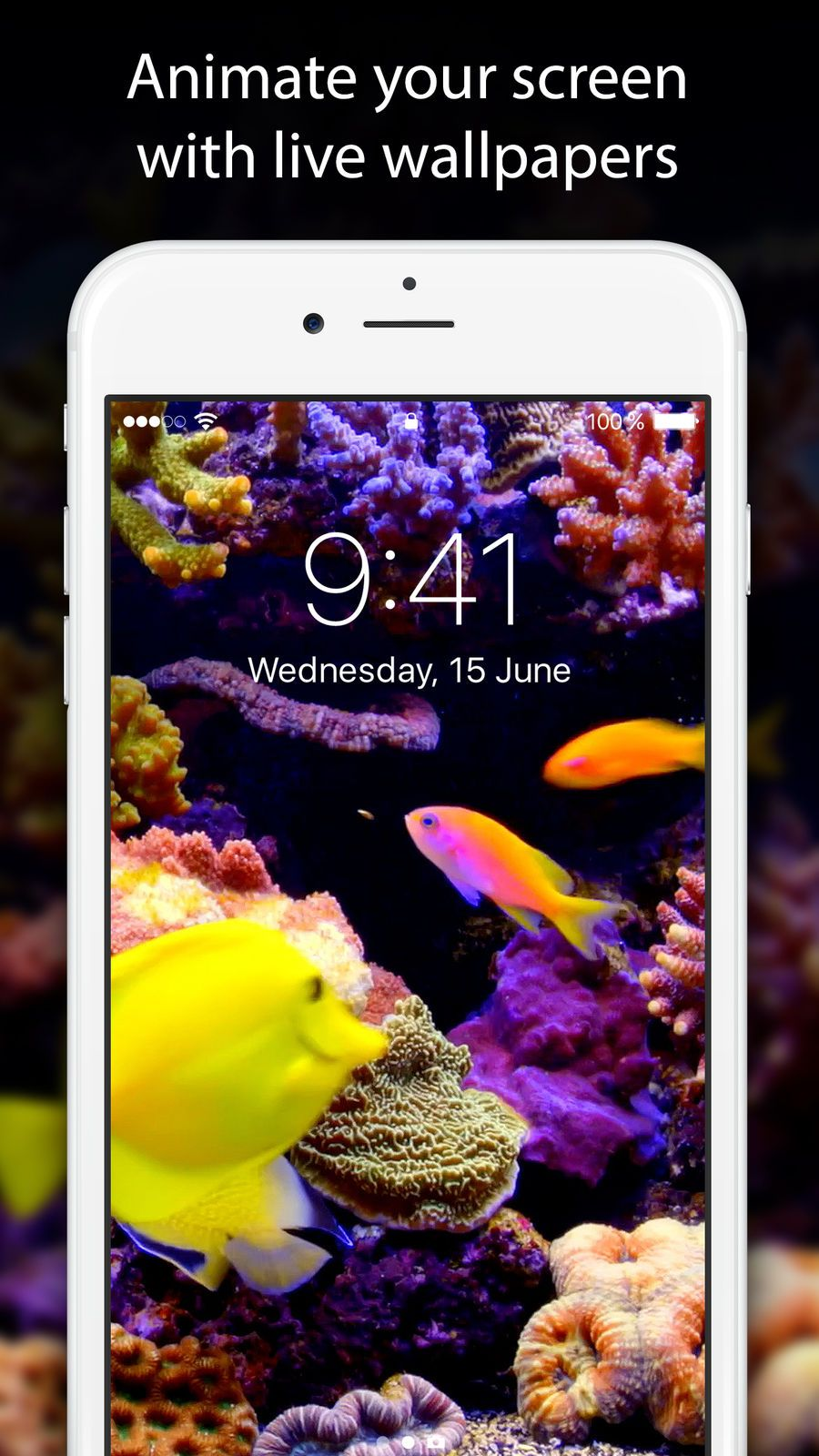 Live Wallpapers and Themes EntertainmentLifestyleapps