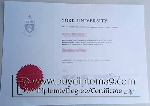York university degree Buy diploma, buy college diploma,buy