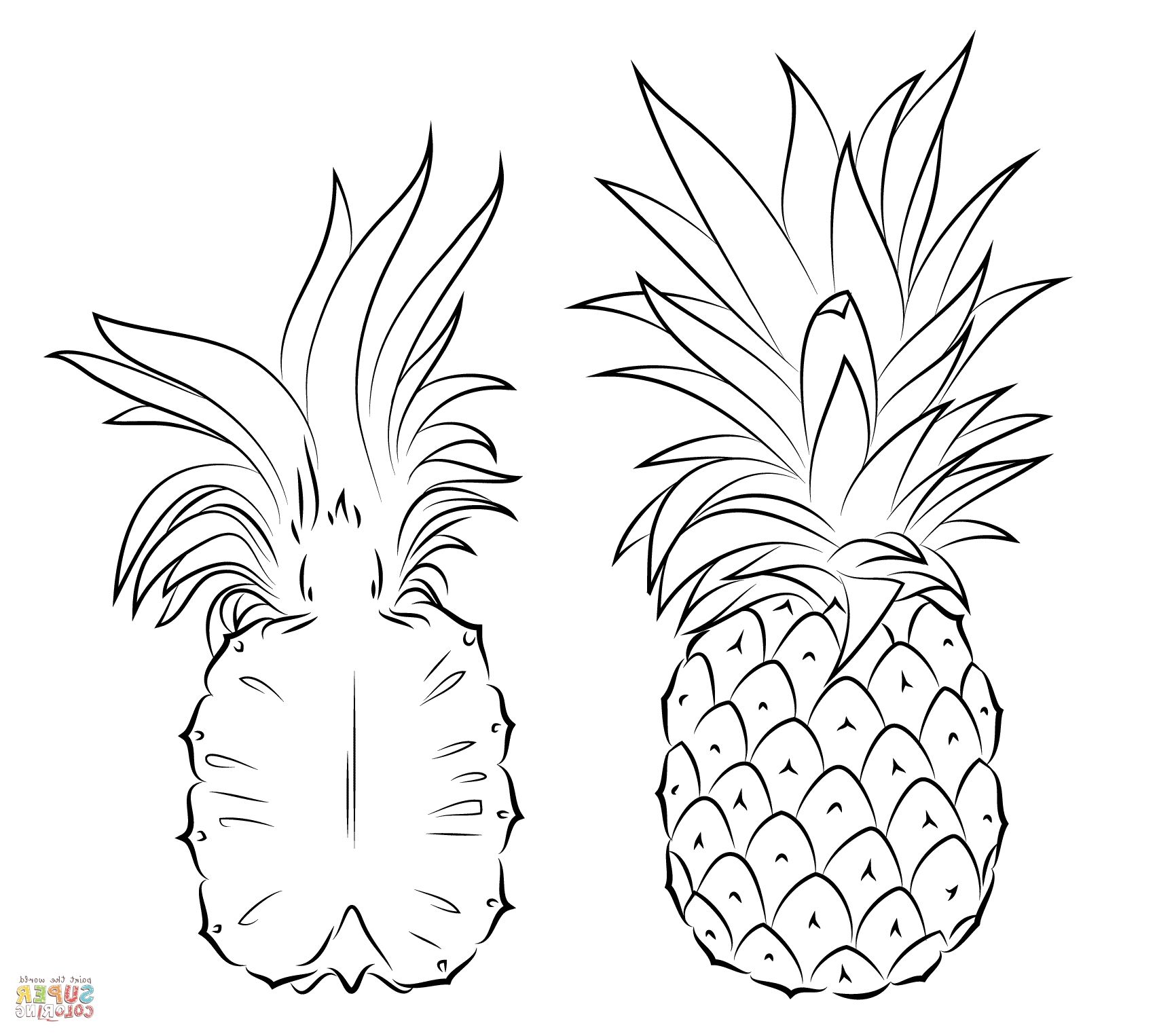 Image Result For Pineapple Coloring Page Pineapple Drawing