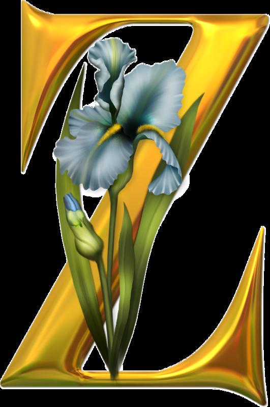 золотые ирисы (26).png | Алфавит, Монограмма и Ирисы