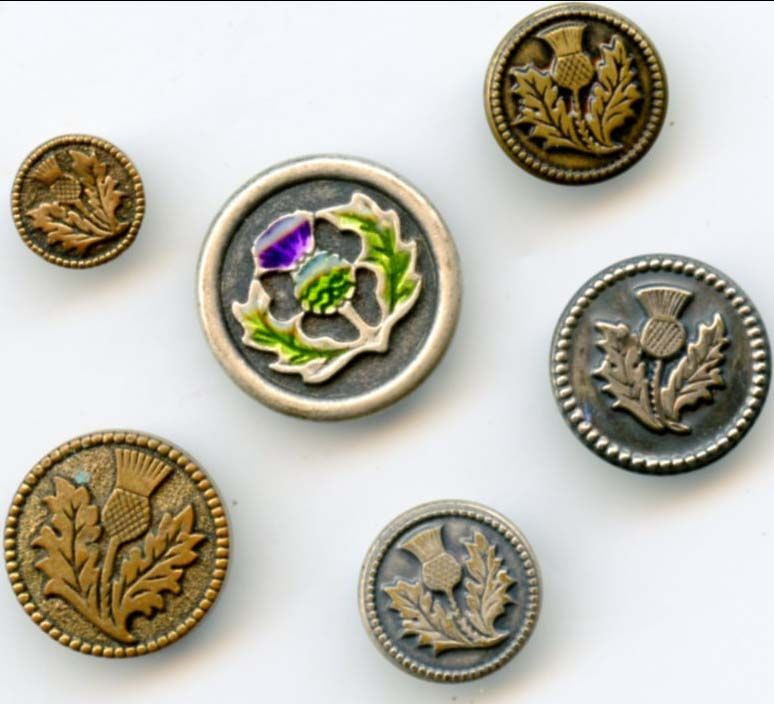 SOLD: thistle buttons  $14.00