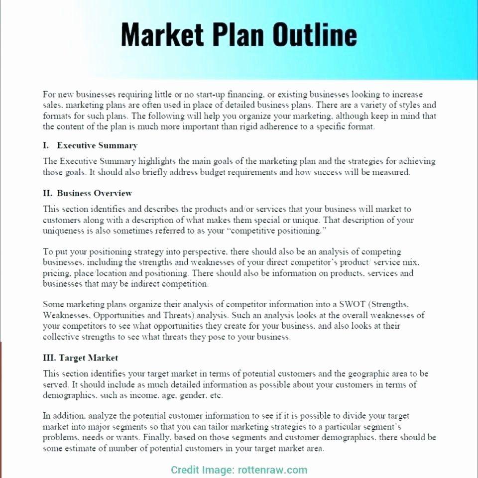 Restaurant Marketing Plan Template Free Download In 2020