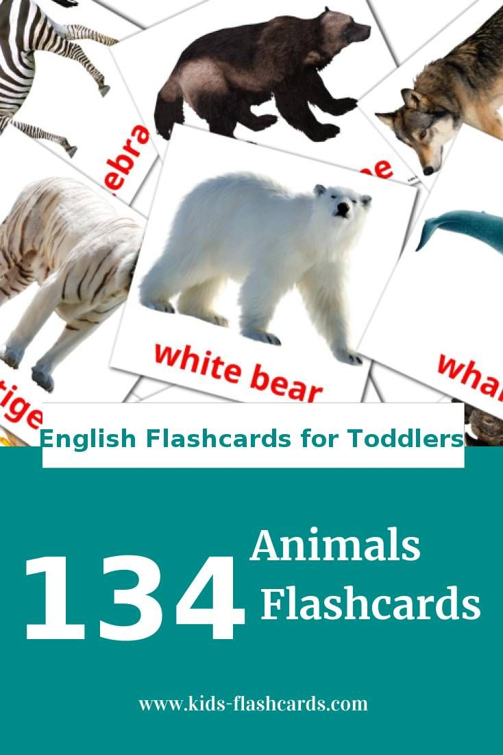 animal flash cards printable pdf