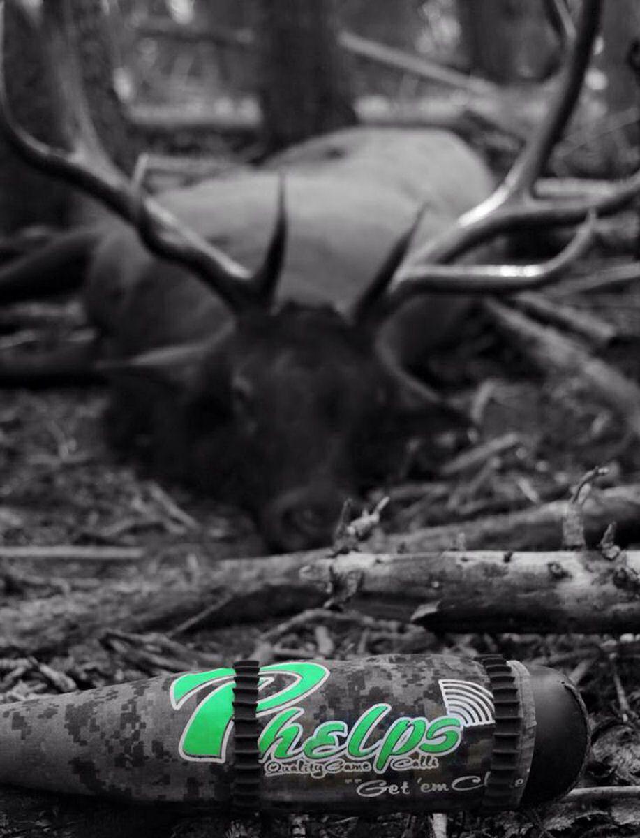 Aggressive tactics for bulls with images elk hunting