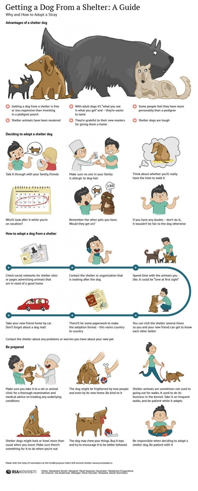 Your Guide To Adopting A Shelter Dog Daily Infographicdaily Infographic Shelter Dogs Dog Infographic Dog Care
