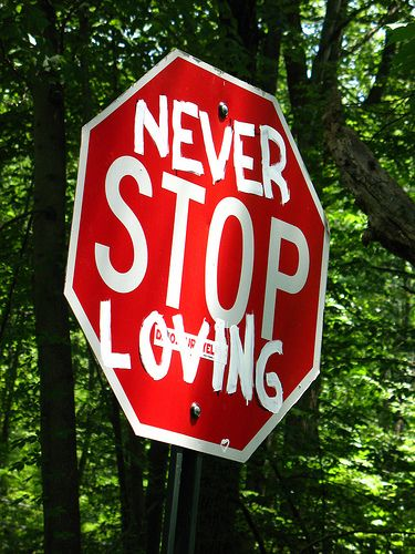 Never Stop ♥ing