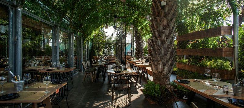 Gewürz Gartengestaltung im Restaurant  - gewurz gartengestaltung im restaurant segev