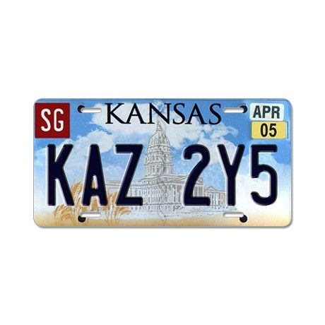 "South Carolina Abbreviation Love License Plate Tag Vanity Front Aluminum 6 X 12/"""